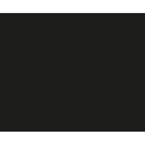 Selam Inc.
