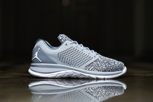 Jordan Trainer ST - Wolf Grey / White / Pure Platinum / Cool Grey